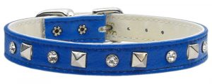 Dog Collar sizes 10-12-14-shop for dogs