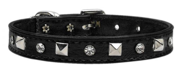 dog collars-shop for dogs-shop for cats