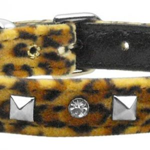 cat collars and leashes- shop for cats