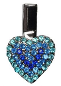 grooming- Heart Clip Blue